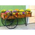 Pots, Planters & More